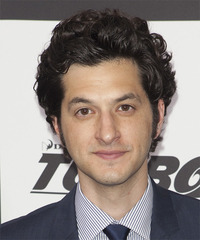 Ben Schwartz Medium Wavy Casual    Hairstyle