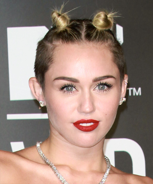 Miley Cyrus Short Straight Alternative  Updo Hairstyle