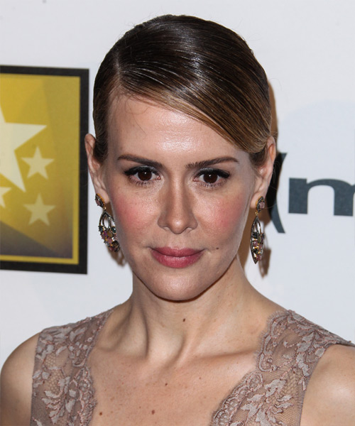 Sarah Paulson Updo Long Straight Formal  Updo Hairstyle