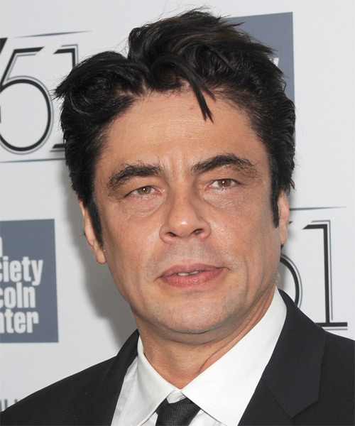 Benicio Del Toro Short Straight Casual   Hairstyle