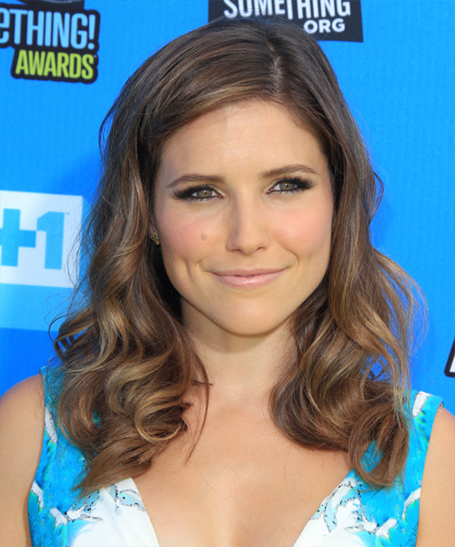 Sophia Bush Medium Wavy Casual    Hairstyle
