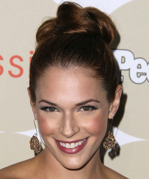 Amanda Righetti Updo Long Straight Formal  Updo Hairstyle