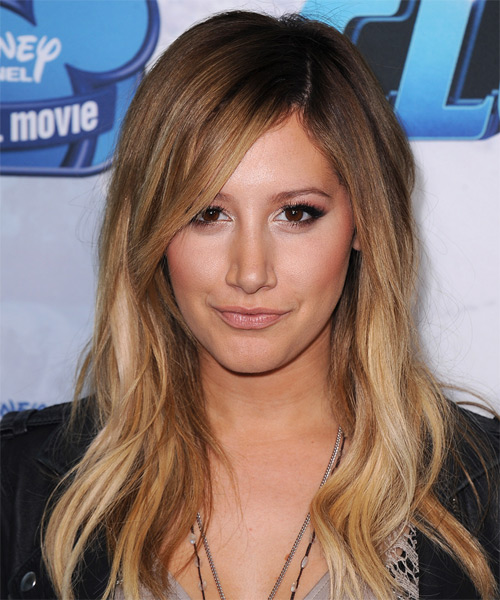 Ashley Tisdale Long Straight Casual Hairstyle Chestnut