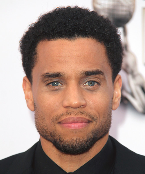 Michael Ealy Short Curly Casual Afro Hairstyle Black Hair Color