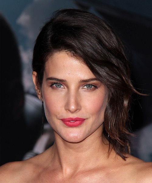 Cobie Smulders Half Up Medium Straight Formal  Half Up Hairstyle   - Dark Brunette (Mocha)