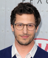 Andy Samberg Short Wavy Casual    Hairstyle   - Dark Brunette Hair Color