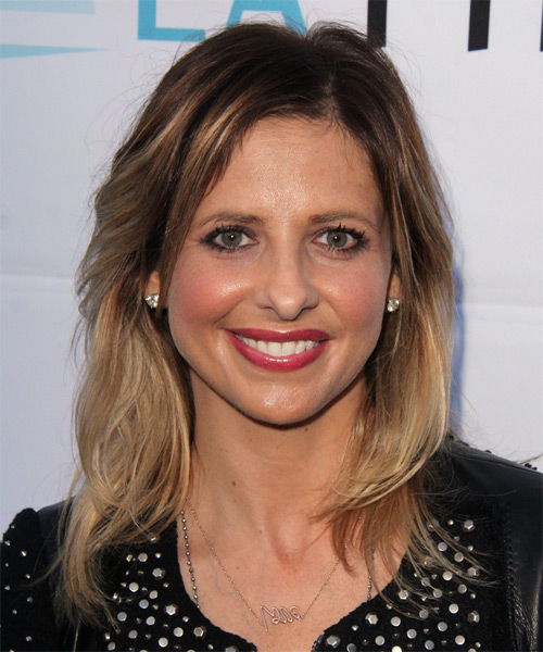 Sarah Michelle Gellar Medium Straight Casual   Hairstyle   - Light Brunette