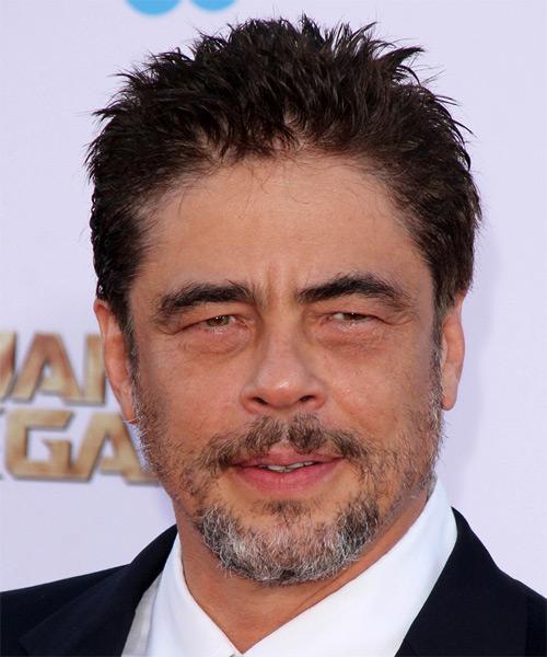 Benicio Del Toro Short Straight Casual Hairstyle Dark
