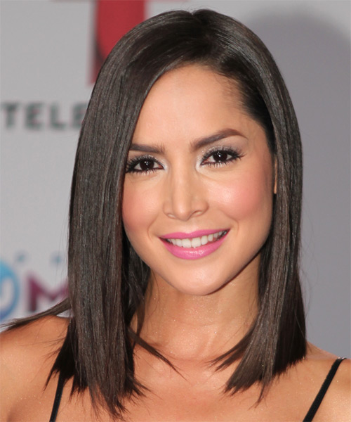 Carmen Villalobos Medium Straight Formal    Hairstyle   - Dark Brunette Hair Color
