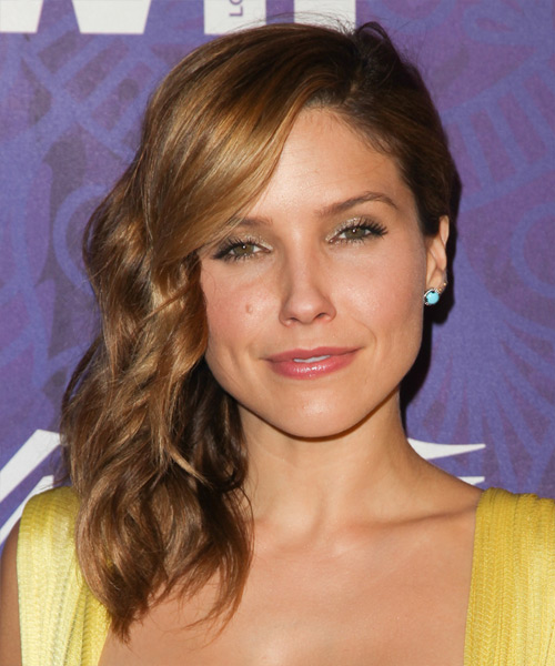 Sophia Bush  Long Curly Formal   Half Up Hairstyle   - Medium Chestnut Brunette Hair Color