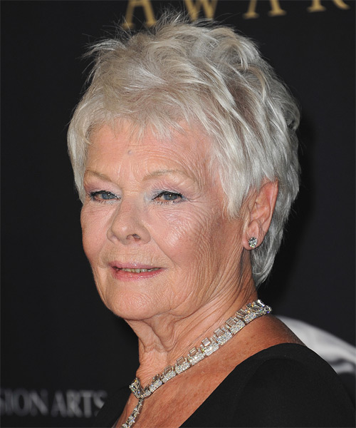 Judi Dench Short Straight Casual   Hairstyle   - Light Grey - Side on View
