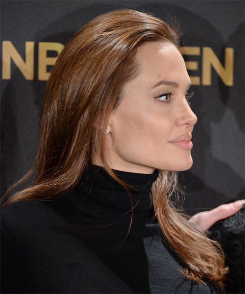 Angelina Jolie Long Straight Casual   Hairstyle   - Medium Brunette (Chocolate) - Side on View