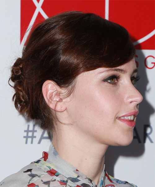 Felicity Jones Long Straight Casual  Updo Hairstyle   - Medium Brunette - Side on View