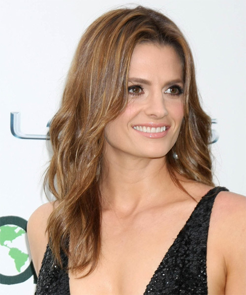Stana Katic Long Straight Casual   Hairstyle   - Light Brunette - Side on View