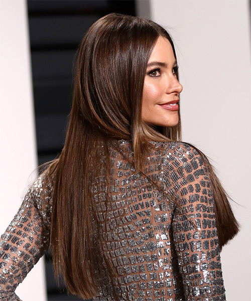 Sofia Vergara Long Straight Formal   Hairstyle   - Medium Brunette - Side on View