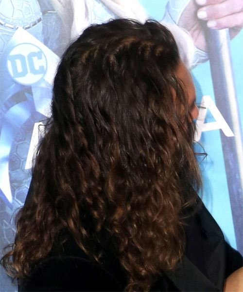Jason Momoa Long Wavy Casual  Bob  Hairstyle with Layered Bangs  - Dark Brunette and Dark Blonde Two-Tone Hair Color - Side on View