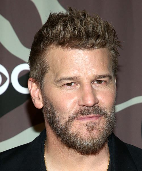 David Boreanaz Short Straight    Ash Blonde   Hairstyle   - Side on View