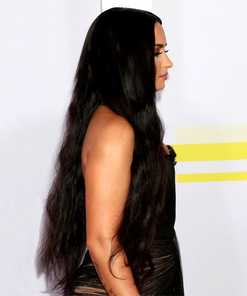 Demi Lovato Long Straight   Black    Hairstyle   - Side on View