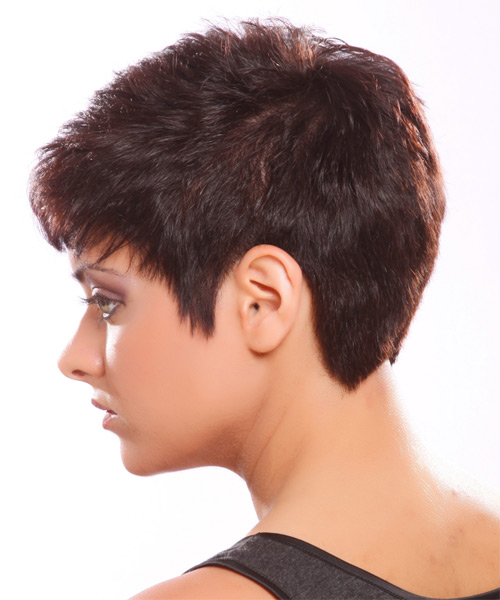 Short Straight Casual   Hairstyle   - Medium Brunette (Plum) - Side on View