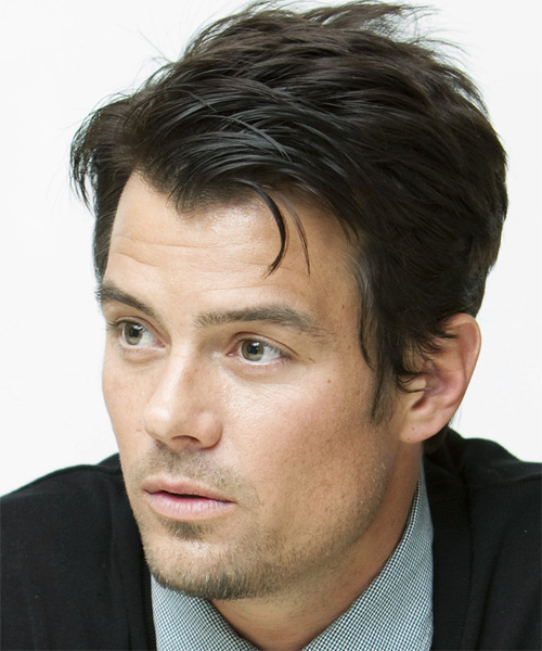 Josh Duhamel Short Straight Formal   Hairstyle   (Ash) - Side on View