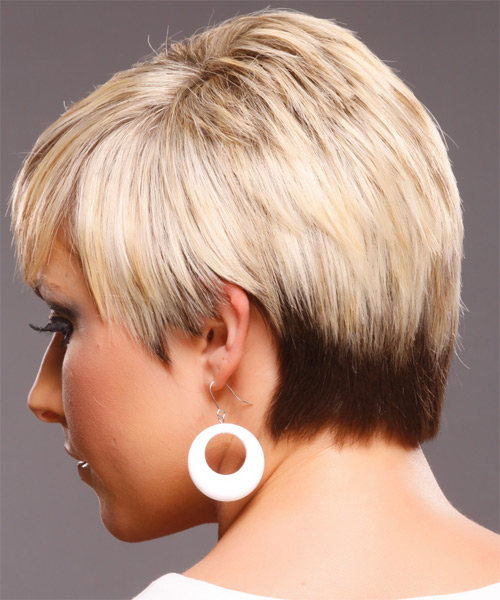 Short Straight Formal   Hairstyle   - Side on View