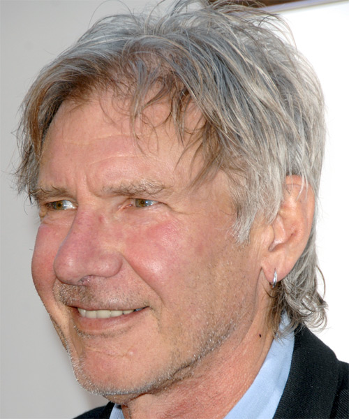 Harrison Ford Short Straight Casual   Hairstyle   - Medium Grey - Side on View