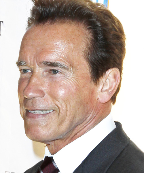 Arnold Schwarzenegger Short Straight Formal   Hairstyle   - Side on View