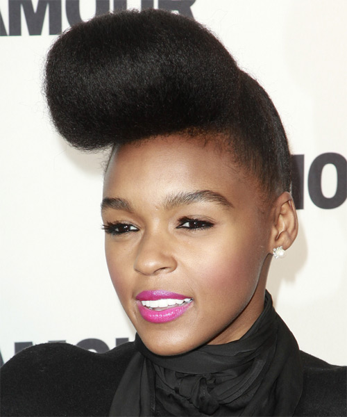Janelle Monae  Long Straight   Black   Updo    - Side on View