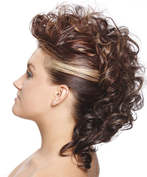 Medium Curly    Chestnut Brunette  Updo    - Side on View