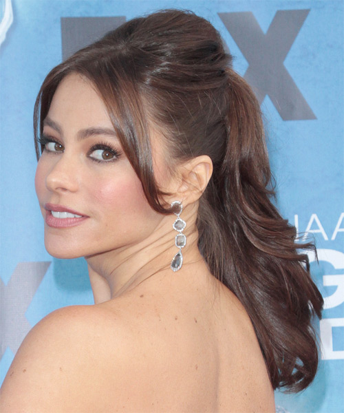 Sofia Vergara Updo Long Straight Formal Wedding Updo Hairstyle   - Medium Brunette - Side on View
