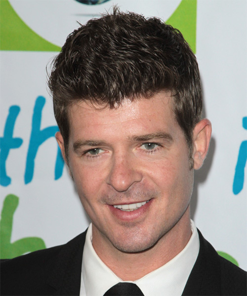 Robin Thicke Short Straight Casual   Hairstyle   - Medium Brunette - Side on View
