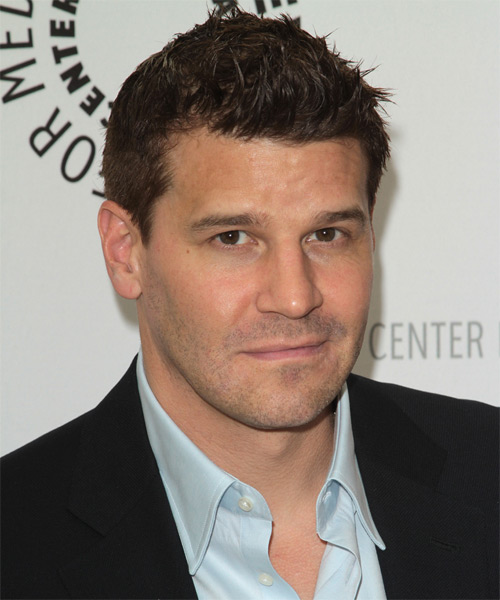 David Boreanaz Short Straight Casual   Hairstyle   - Medium Brunette - Side on View
