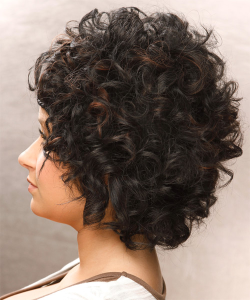 Short Curly Casual Braided  Hairstyle   - Black - Side on View