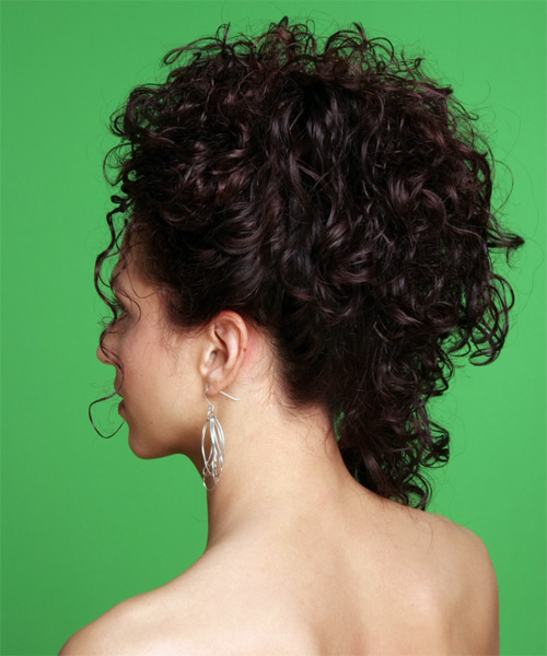 Updo Long Curly Formal Wedding Updo Hairstyle   - Dark Brunette - Side on View