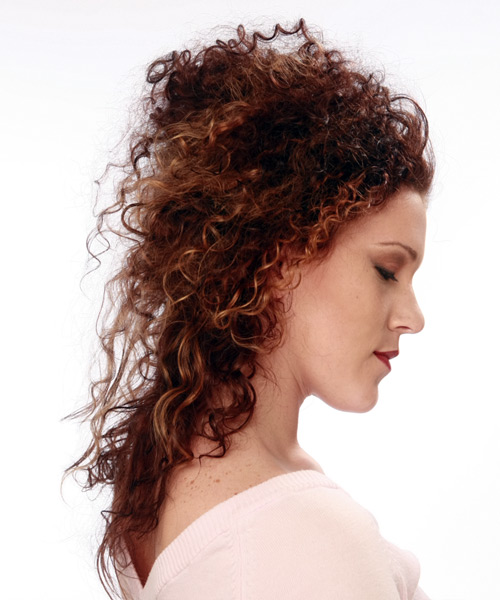 Long Curly Formal   Updo Hairstyle   - Dark Mahogany Red Hair Color - Side on View