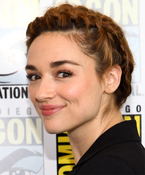 Crystal Reed  Long Curly   Dark Honey Brunette Braided Updo    with  Blonde Highlights - Side on View