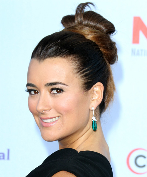 Cote de Pablo Updo Long Straight Formal Wedding Updo Hairstyle   - Dark Brunette - Side on View
