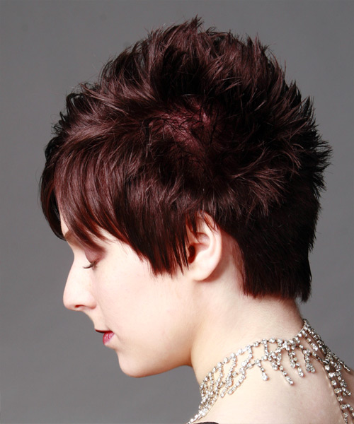 Short Straight Casual   Hairstyle   - Side on View