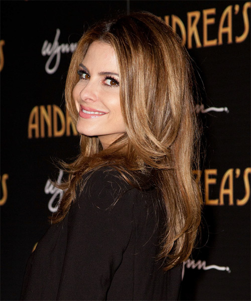 Maria Menounos Long Straight Formal   Hairstyle   - Medium Brunette - Side on View