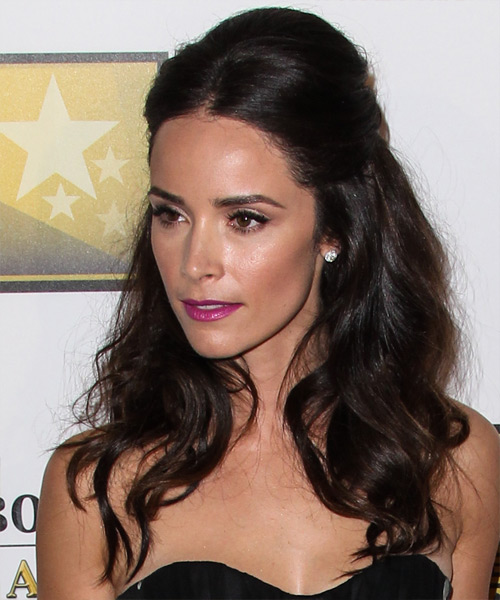 Abigail Spencer  Long Straight   Dark Mocha Brunette  Half Up Hairstyle   - Side on View
