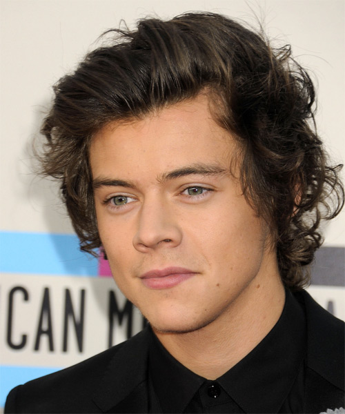 Harry Styles Short Straight   Dark Ash Brunette   Hairstyle   - Side on View