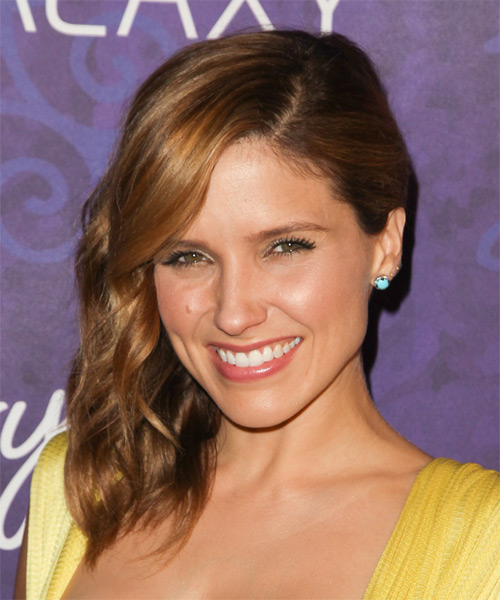 Sophia Bush Half Up Long Curly Formal  Half Up Hairstyle   - Medium Brunette (Chestnut) - Side on View