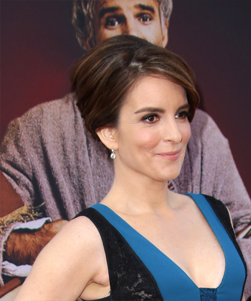 Tina Fey Long Straight Formal Wedding  Hairstyle   - Dark Brunette - Side View