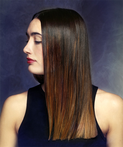 Long Straight Formal    Hairstyle   - Dark Brunette and Dark Blonde Two-Tone Hair Color - Side View