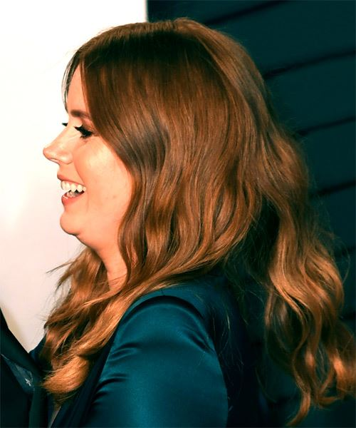 Amy Adams Long Wavy   Dark Brunette and Copper Two-Tone   Hairstyle   - Side View