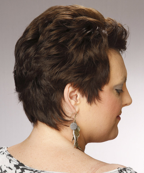 Short Straight Formal   Hairstyle   - Dark Brunette - Side View