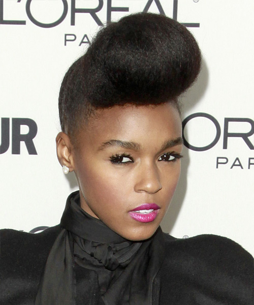 Janelle Monae  Long Straight   Black   Updo    - Side View