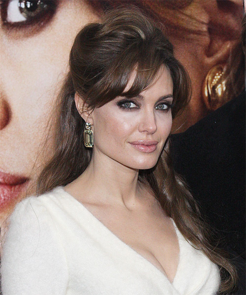 Angelina Jolie  Long Straight Casual   Half Up Hairstyle with Side Swept Bangs  -  Brunette Hair Color - Side View