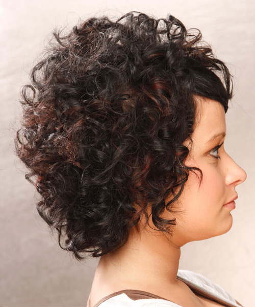Short Curly Casual Braided  Hairstyle   - Black - Side View