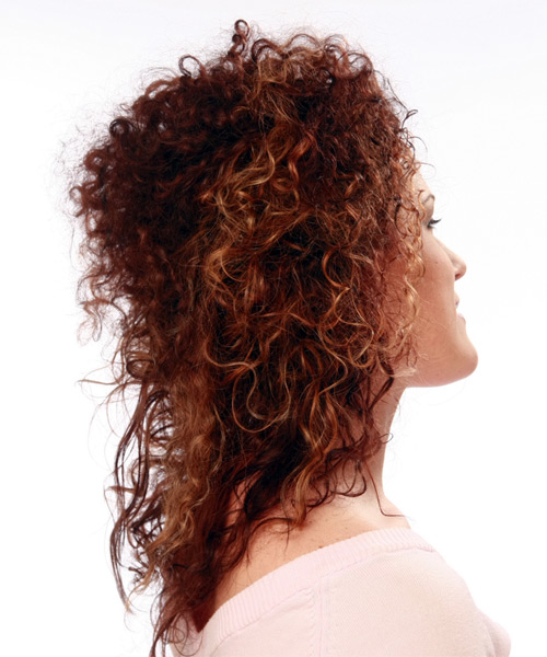 Long Curly Formal   Updo Hairstyle   - Dark Mahogany Red Hair Color - Side View